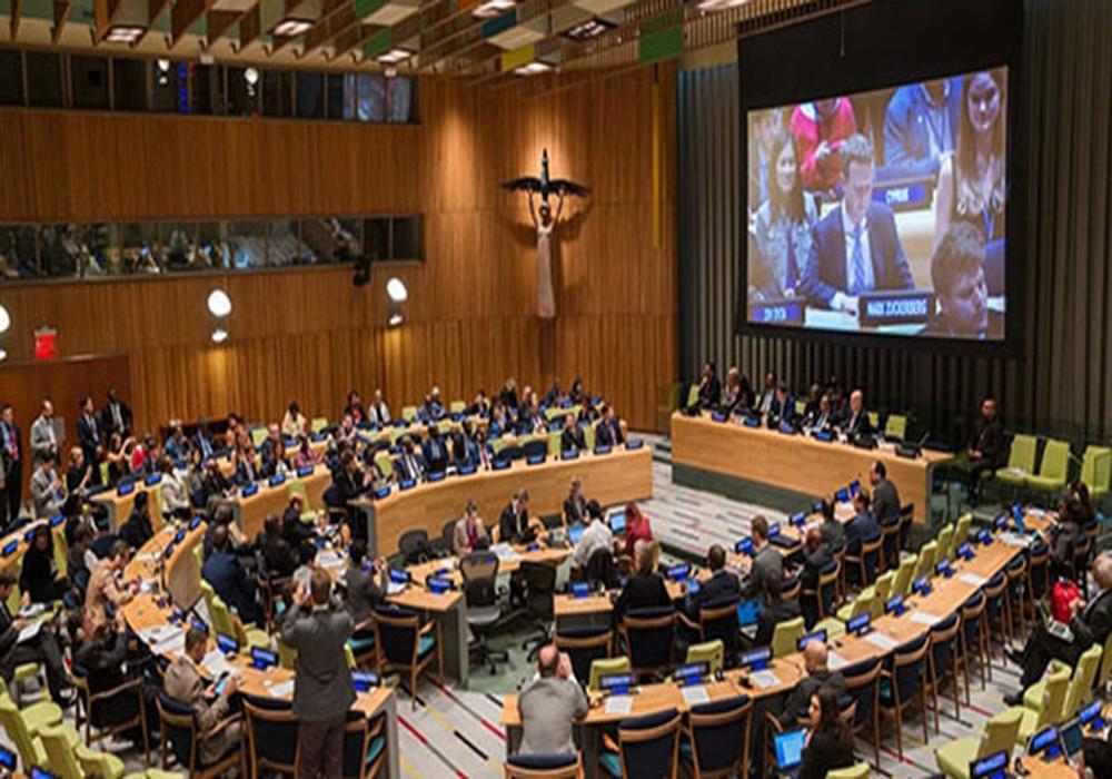سازمان ملل2
