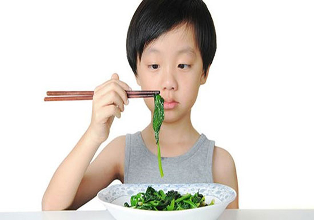 گیاه خواری2